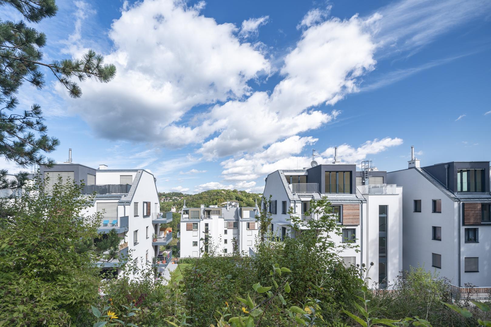 Immobilienfotografie Neubau Gartenpark Wien von Fotograf Michael Pinzolits