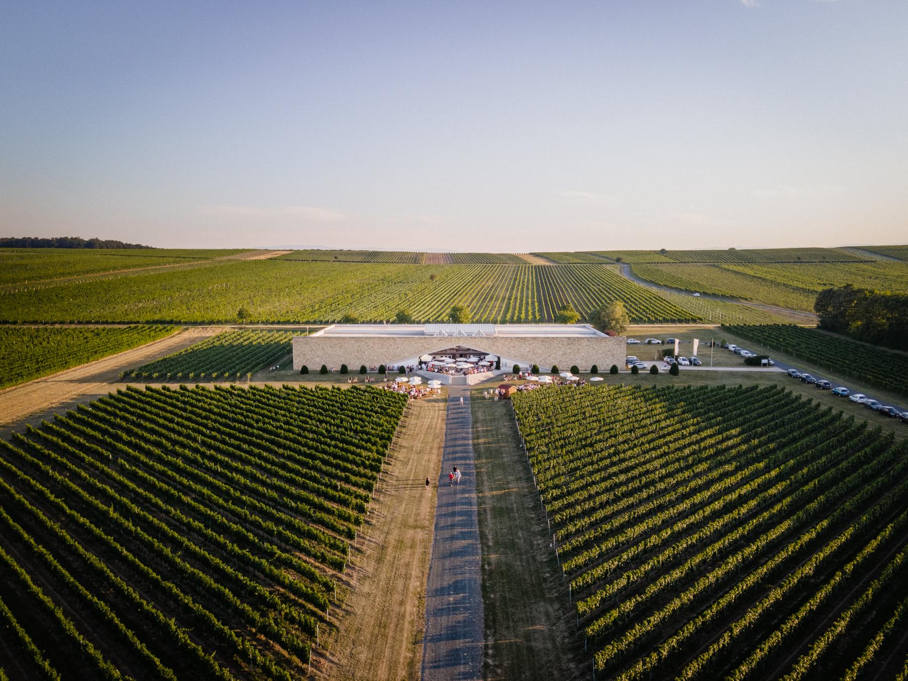 Weingut Eichenwald-Drohne